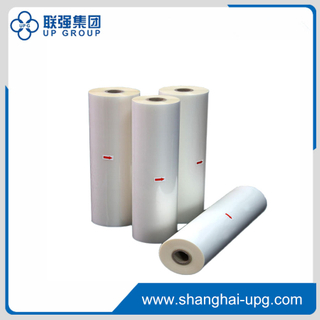 Bopp Thermal Lamination Film (Gloss & Matt)